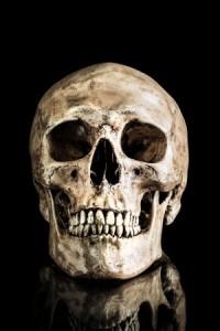 Blog-Skull-25175164_s
